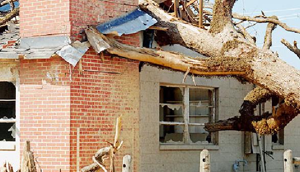 Sturmschaden: Baum ist auf Haus gefallen © PixelThat, Fotolia.com