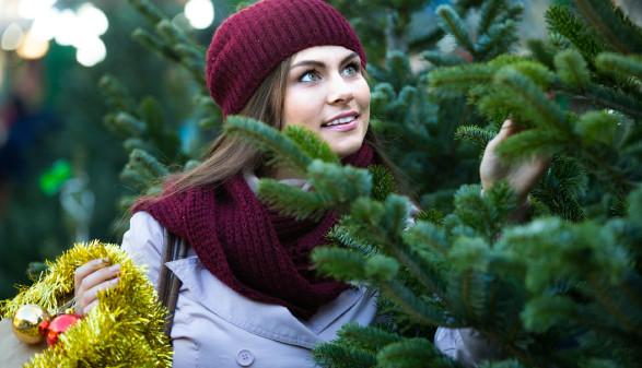Frau kauft Christbaum © JackF, stock.adobe.com