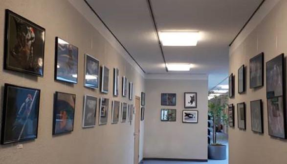 Bilderausstellung © -, Arbeiterkammer Oberösterreich