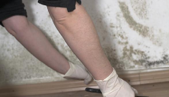 Schimmelentfernung in der Wohnung © GaToR-GFX, Fotolia.com
