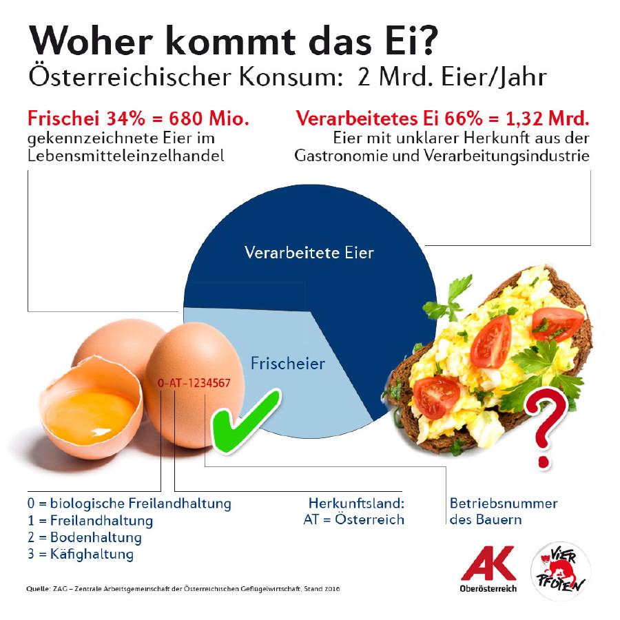 Grafik: Woher kommt das Ei? © -, 4 Pfoten + AK Oberösterreich