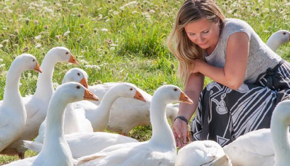 Frau mit Gänsen © Shmel, stock.adobe.com